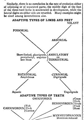 [merged small][merged small][graphic][merged small][merged small][merged small][merged small][merged small][merged small][ocr errors][merged small][graphic][ocr errors][merged small]
