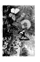 الصفحة 458