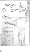 الصفحة 324