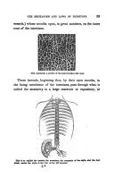 الصفحة 53