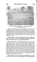 الصفحة 452