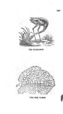 الصفحة 317