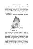 الصفحة 321