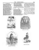 الصفحة 809
