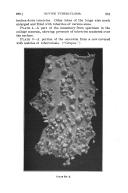 الصفحة 291