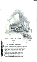 الصفحة 303