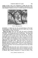 الصفحة 111