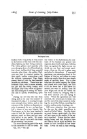 الصفحة 737
