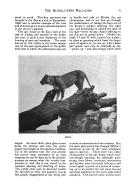 الصفحة 718