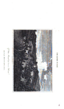 الصفحة 376