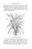 الصفحة 327