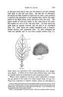 الصفحة 219