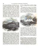 الصفحة 446