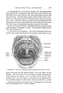الصفحة 363