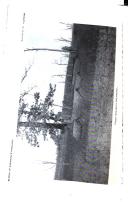 الصفحة 88